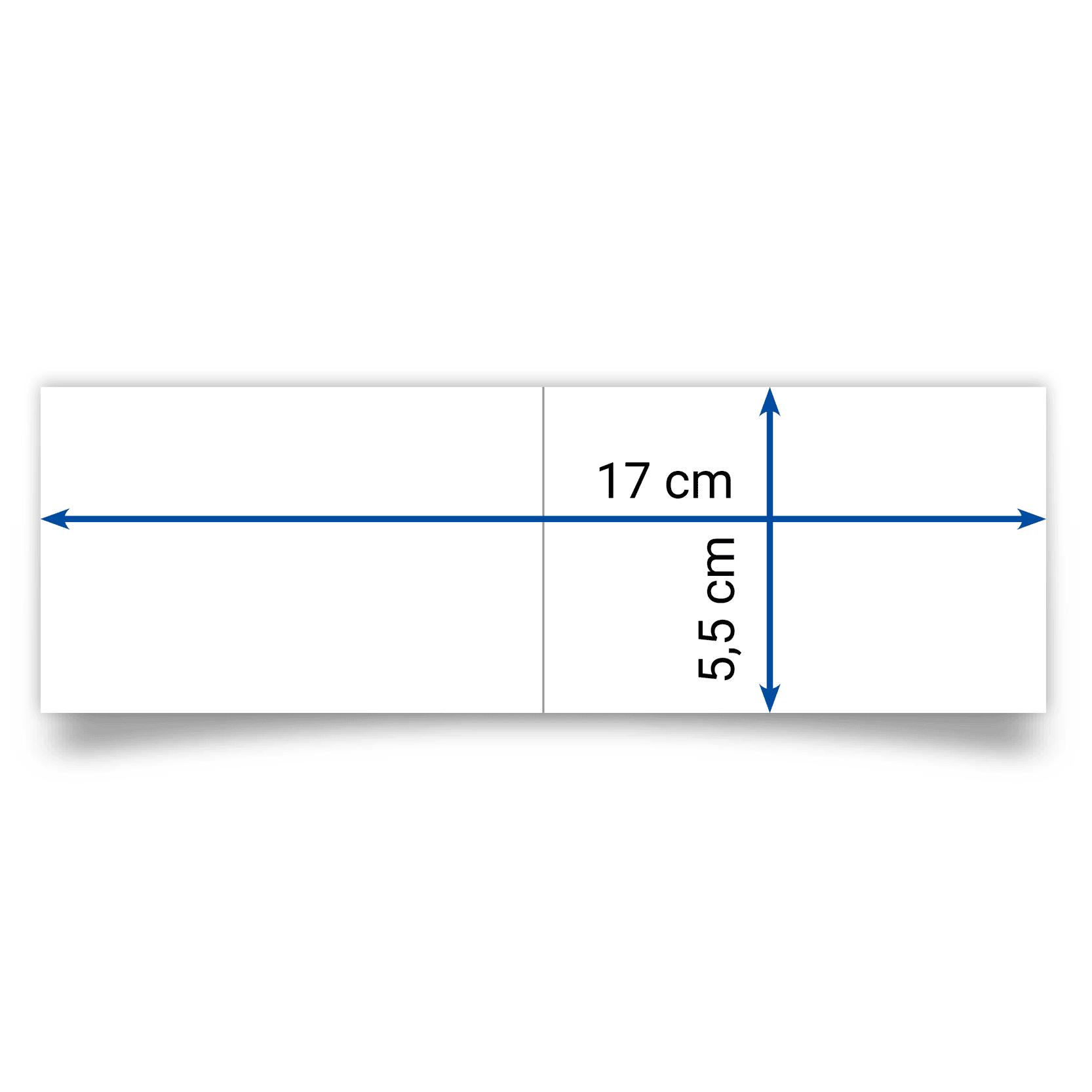 biglietto pieghevole 17x5,5 cm