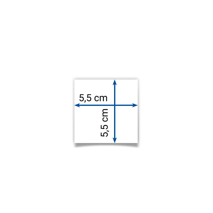 biglietto 5,5x5,5 cm