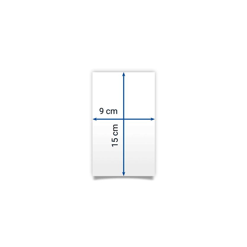 flyer 9x15 cm